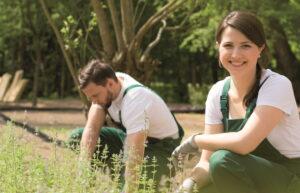 Gärtner und Gärtnerin pflegen eine Grünanlage.